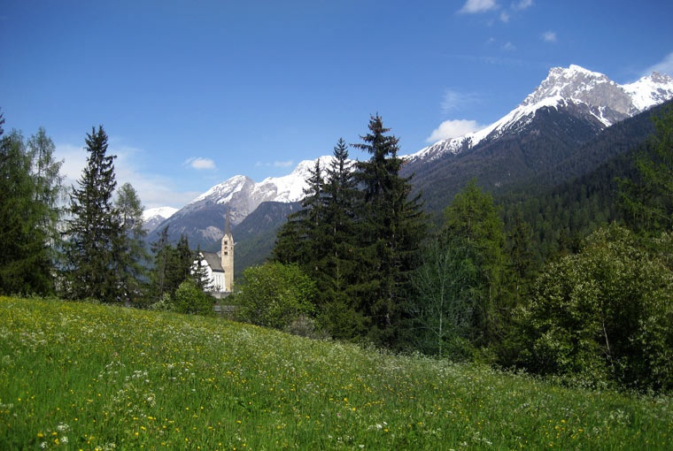 Typowa łąka w Szwajcarii, miejscowość Scuol