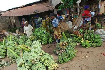 Sklep z bananami, Nigeria