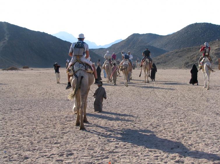 Wioska Beduinów, jazda na wielbłądach - Wycieczka objazdowa - Egipt