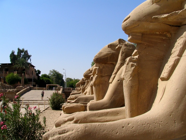 Aleja Sfinksów w Karnaku - Wycieczka objazdowa - Egipt