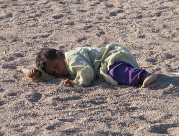 Wioska Beduinów - Egipt - 3268