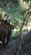 - okolice Chiang Mai - Tajlandia