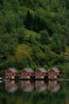 -  - Norwegia