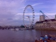 London Eye - Londyn - Anglia
