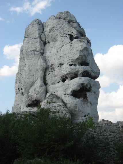 Skała nazywana niedźwiedziem - Ogrodzieniec - Polska