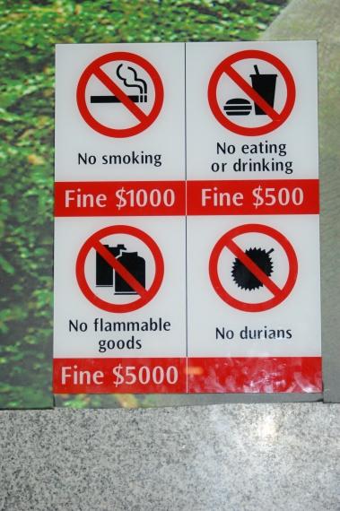 Singapur miasto zakazów i wysokich kar - Singapur - Singapur