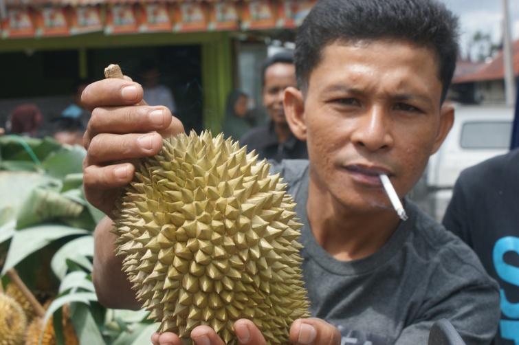 Durian  - Sumatra - Indonezja