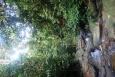 Bukit Lawang - Indonezja