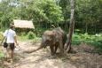 KOH LANTA - Tajlandia