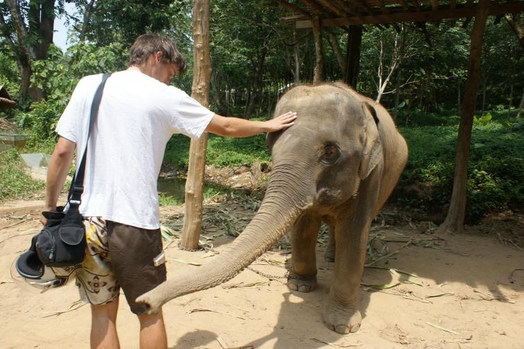 Face to face ! - KOH LANTA - Tajlandia