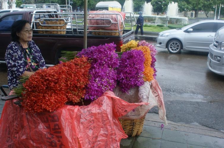 Flower Market - Storczyki - Bangkok - Tajlandia