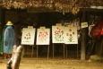 Maesa Elephant Camp - Tajlandia