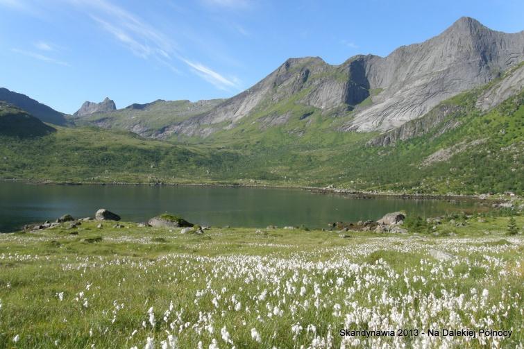 Okolice Selfjorden - Lofoty - Norwegia