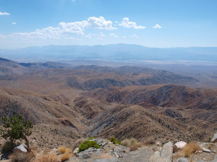 Joshua National Park, CA - Route 66 - USA