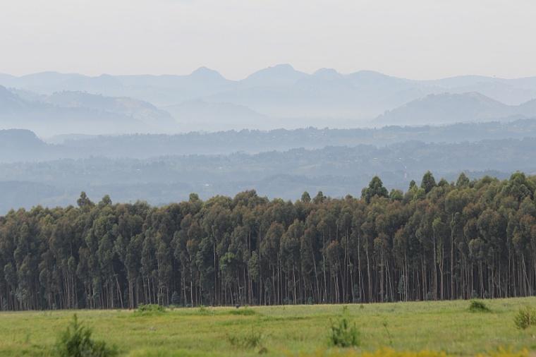 Rwanda – relacje z podróży